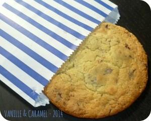 Cookie aux trois chocolats Vanille et Caramel
