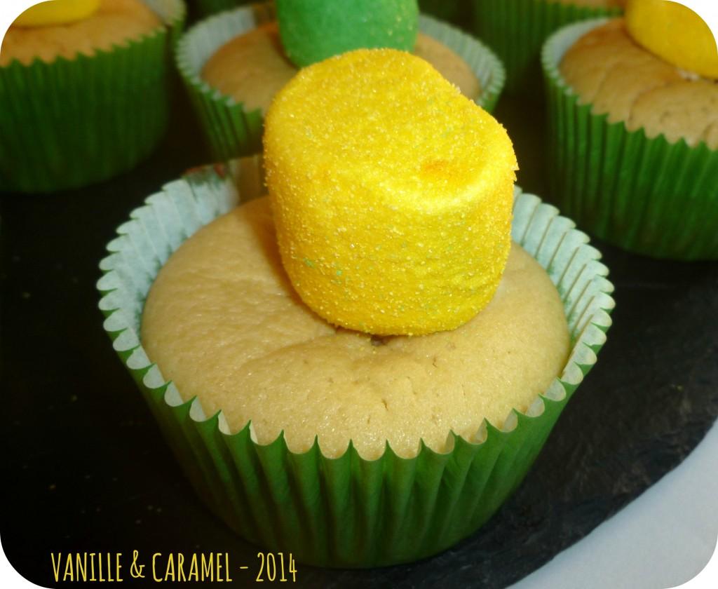 Cupcakes passion coco 2 Vanille et Caramel