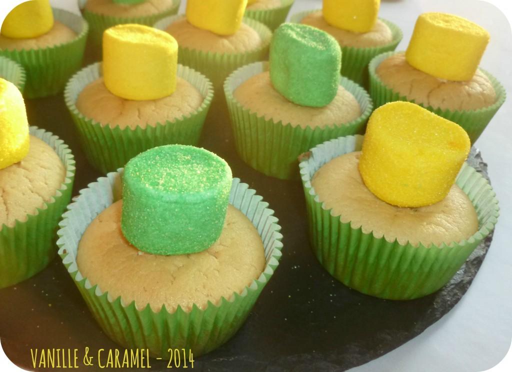 Cupcakes passion coco Vanille et Caramel